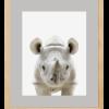 Safari Rinoceronte
